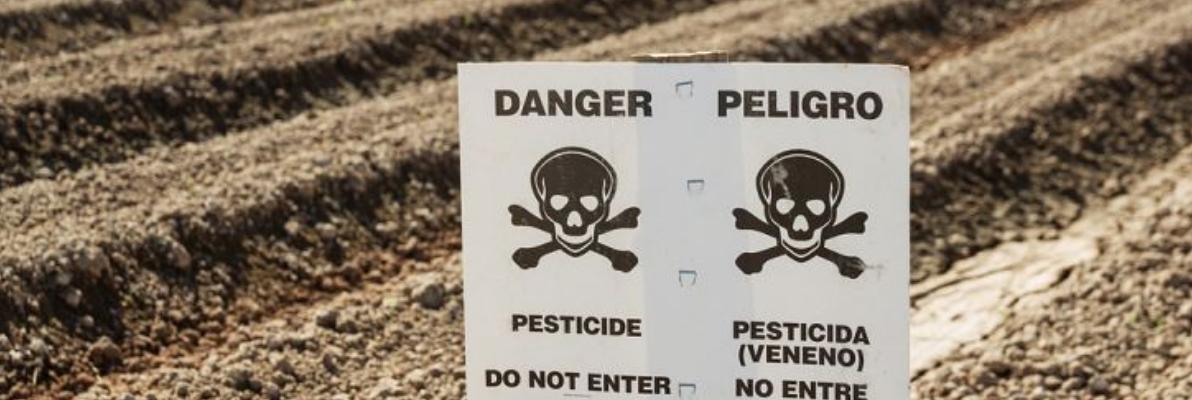 Пестициды снижают фертильность Телебеби