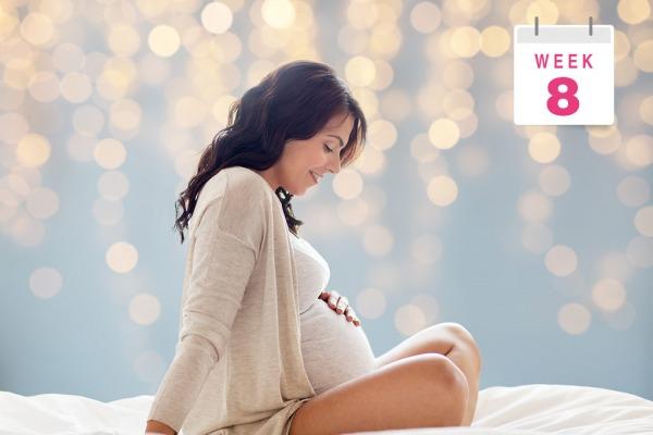 8 неделя беременности - Телебеби