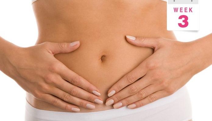 3 недели беременности -Телебеби
